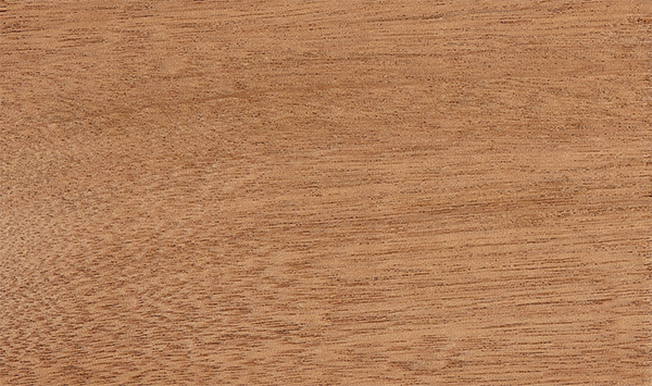 Sapele Wood Species