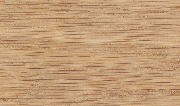 White Oak Wood Species